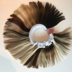 Salon Luxury Colour Ring
