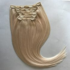 Clip In Remy Hair Extensions Platinum Blonde 60