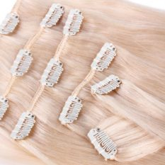 clip in hair extensions blonde 613